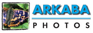 Arkaba Photos