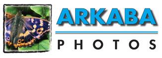 Arkaba Photos